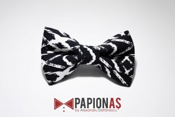 Papion Abstract XY