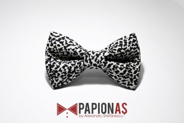 Papion Dalmatian