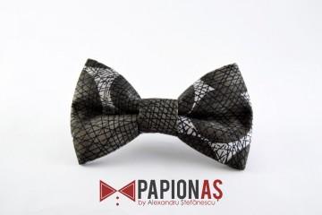 Papion Dark Geometry