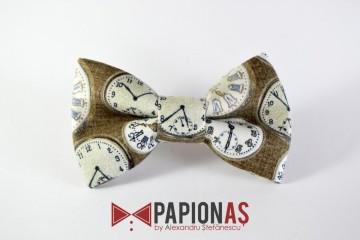 Papion Time