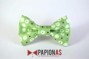 Papion Green dandelions