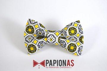 Papion Other dandelions