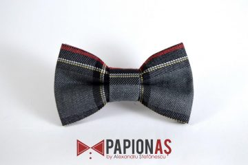 Papion Old Fashioned 18
