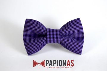 Papion Old Fashioned 22
