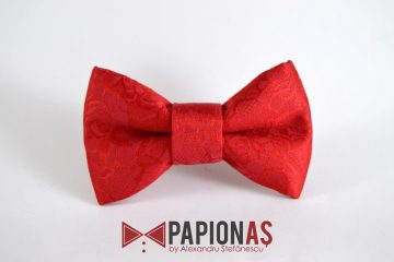 Papion Royal red