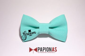 papion-mint-groom