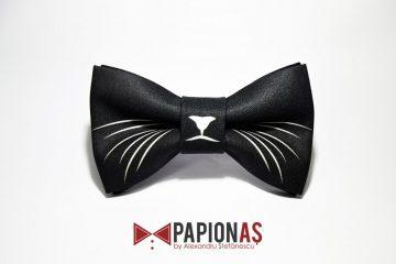 papion-cats