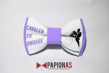 papion-cavaler-de-onoare-4