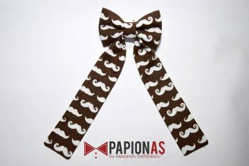 papion_fundita_brown_moustache