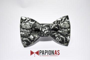 papion auto parts 4