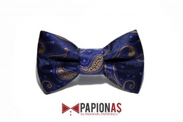 papion bleumarin paisley 4